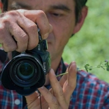 Аватар на Svetlio70
