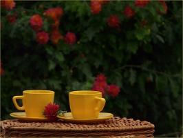 Винаги има време за чаша кафе ...