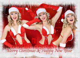 Весела Коледа и Щастлива Нова Година на Всички!