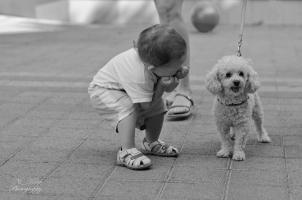 Хей, кученце