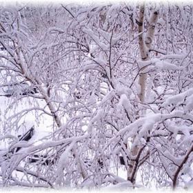 Истинска зима