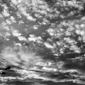 [forever.sky]