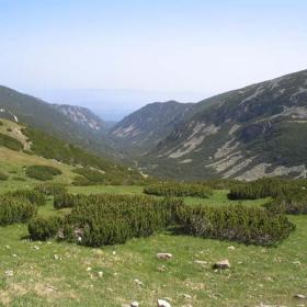 Dolinata na Musalenska Bistriza 10.07.2004
