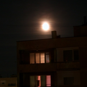 Морска луна