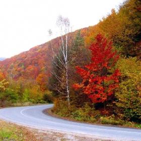 Път през есента