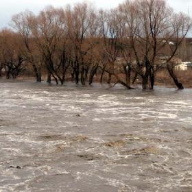 река Росица
