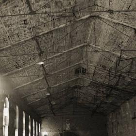 nosferatu`s dark hall