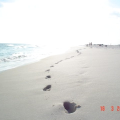Footprints in the sand, Florida