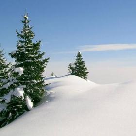 Снежна картичка