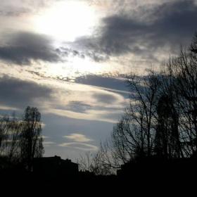 Облаци + дървета 1