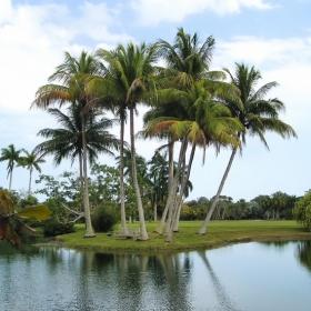 Край Маями,Флорида