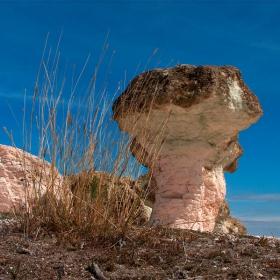 Каменна гъба (край с. Бели пласт)