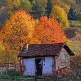 Нека да е есен....