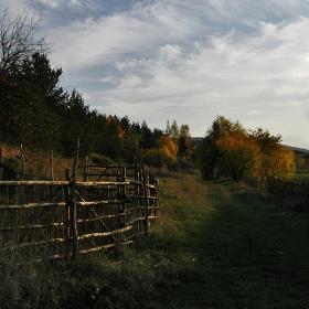 Няма вик на дървар, ни пътека позната....само тихо вятър шуми
