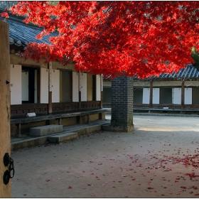 През портите на есента