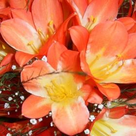 Цвете с неизвестно за мен име