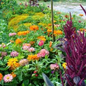 градина с цветя