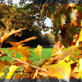 Есен, есен