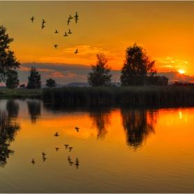 Бавно догаря денят...самотен крясък.....или плясък на птичи крила...