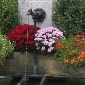Фонтан с цветя