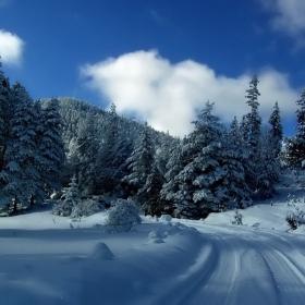 Нека да е зима!