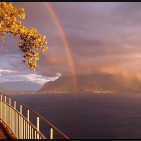 - Rainbow -
