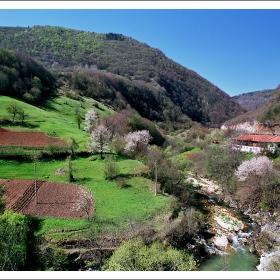 Пролет в долината на Арда