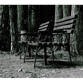 спрял миг от вечността ,тишината бледи спомени донесе...питам се къде си..