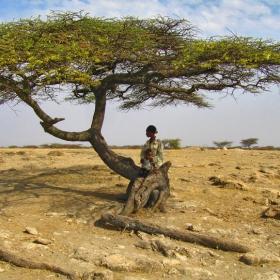 Етиопски пейзаж