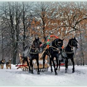 Зимние забавы 3