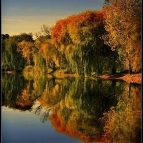 есенни върби