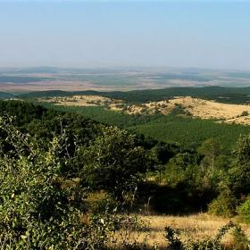 подножието на Стара планина през август...