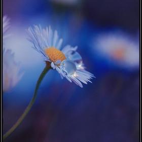...*Deep...*...Blue*...