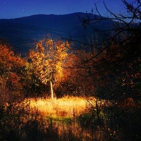 магийката на есента