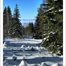 Зимно_21