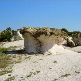 Каменните гъби-Бели пласт