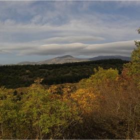 Още е златна есен