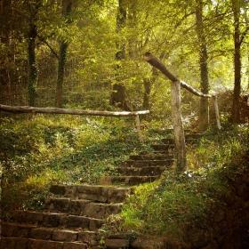 стълбите, водещи към нещо по-добро...