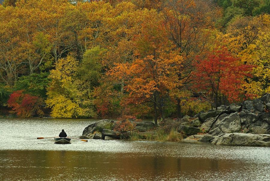 Пръски от есента