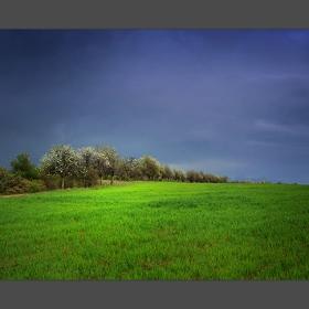 Селска пролет