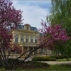 Русе, двореца на княз Ал. Батенберг