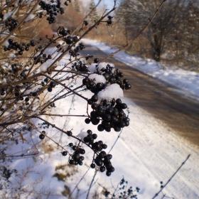 Прекрасната зима :)