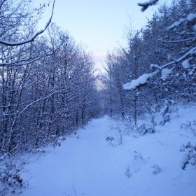 любимата ми зимна снимка =)