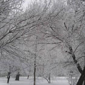 това е истинската зима ....
