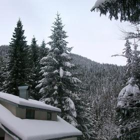 Снежко затрупа всичко навън