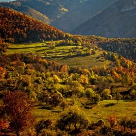 Есен в Борово