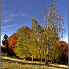 Слънчева есен броди навред......:)