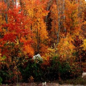 есенни нюанси