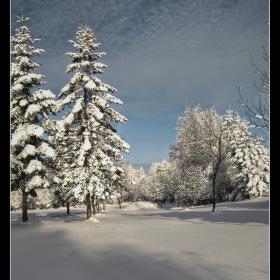Снежно