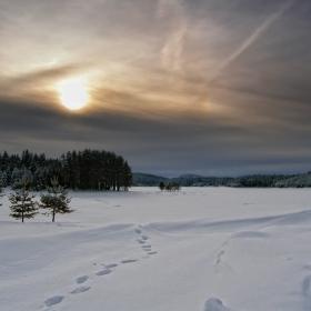 Студено слънце